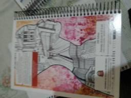 3 cadernos de 10 materias 30 pelos 3