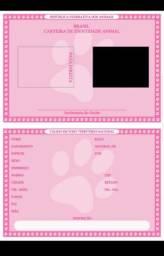 Carteirinha de Identidade e certidão de nascimento.