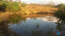 Fazenda 48 alqueires Piracanjuba Goias