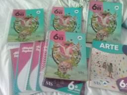 Vendo livros da coleção do SAS 6 ano