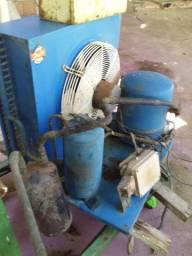 Esteira coletora e compressor frigorífico