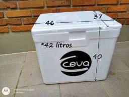 Kit Caixa Isopor 42l + 2 Gelo Gel