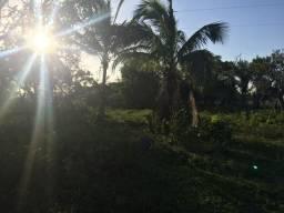 Vendo/alugo área em Aracruz