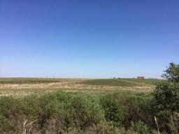 Campo em bagé-rs 153 ha Agricultura e pecuária