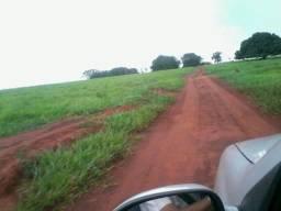 Fazenda 115 Alqueires 52km de Jatai ,Cultura