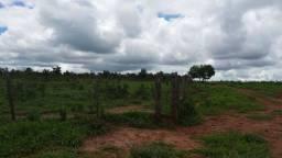 Título do anúncio: Fazenda a venda em Paranatinga Mato Grosso/MT