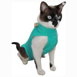 Roupa pós cirúrgica para gatos