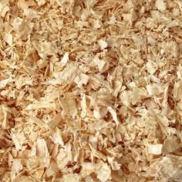 Serragem de madeira