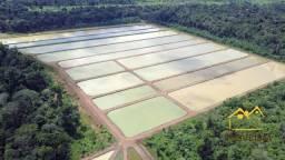 Sítio com 2 dormitórios à venda, 1204448 m² por R$ 5.000.000,00 - Área Rural de Candeias d