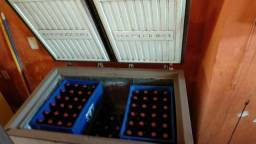 Freezer 305L