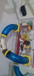 rato twister 2