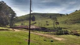 Fazenda de 86 alqueires no Sul de Minas