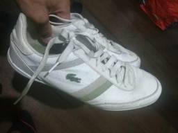 b88b3707590 Tenis Lacoste original 42 ótimo estado - Roupas e calçados - Tijuca ...