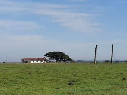 Fazenda 583 ha Arrendada Soja e Pecuária Capão da Porteira Capivari