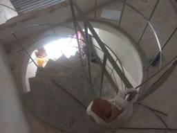 Escada caracol em bom estado de conservação