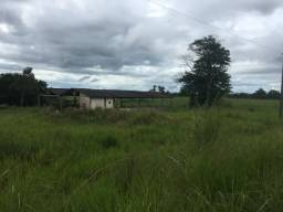 Vendo fazenda São Domingos R$ 11,500 milhões