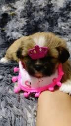 Uma princesa esperando você!!