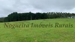 Fazenda com 60 alqueires para pecuária (Nogueira Imóveis Rurais)