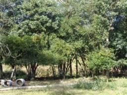 Chácara c/ 2 hec. Estrada Municipal de Canudos-Arroio Grande-10002