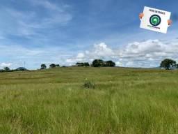 Fazenda 1300 ha para arrendamento