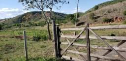 Fazenda 104 hectares , próximo de Governador Valadares MG