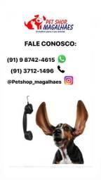 Pet Shop Magalhães