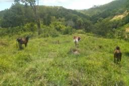 Serra d Cipó!!!terreno rural de 13 hectares * WhtsApp