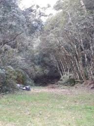 Terreno em São Chico
