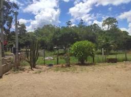 Título do anúncio: Chácara para venda Terreno com 1106m², casa com 200m², horta e galinheiro- Porto Alegre -