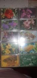 Vendo coleção de cartao telefónico