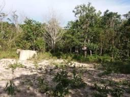 Vendo uma Terra na Agrovila João Ponce de Arruda 31 hectare
