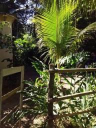 Título do anúncio: Casa em Itacuruça Ilha da Gamboa