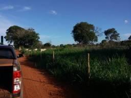 Excelente fazenda em Uruana de Minas 175 hectares
