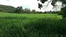 Fazenda 70% Permuta Porto Nacional Tocantins