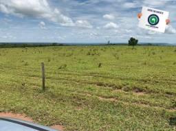 Fazenda 100 ha região de bom jardim