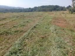 1,2 hectares Piedade