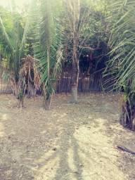 Sitio em Alto Algre-ma