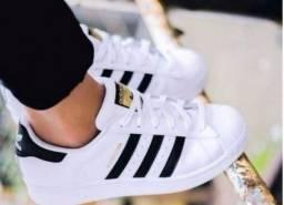 Tênis Adidas super star