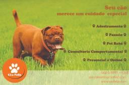 Consultoria Comportamental, Dog Walker (Passeio com cães), Pet Babá e Adestramento.