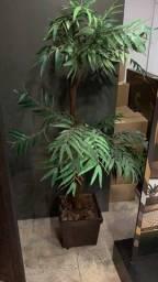 Vaso e planta artificial