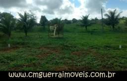 Lotes em Limoeiro com 200,00 m² localizados as margens da PE-90 no Km 20/Ref-286
