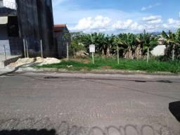 Lote em Igarapé no bairro