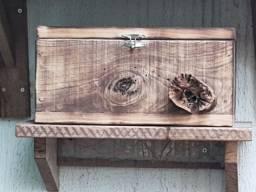 Caixa de abelhas mandaçaia