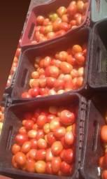 Vendo tomate