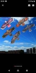 Vendo pipas em formato de águia nova lacrada, já com 30 metros de linha