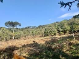 Chácara em Urubici/ terrenos em Urubici