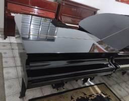ShowRoom C/Otimas Seleções Em Pianos Caudas Acesse Site CasaDePianos