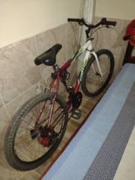 Bicicleta rodado 26  450