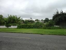 Terreno para alugar em Vista alegre, Curitiba cod:02291.002