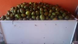Frutas caja manga